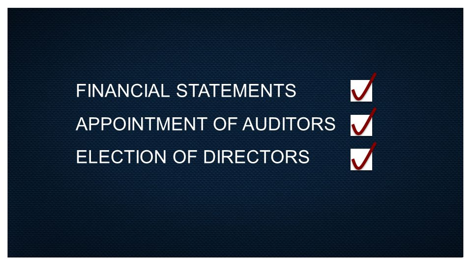 FINANCIAL STATEMENTS APPOINTMENT OF AUDITORS ELECTION OF DIRECTORS