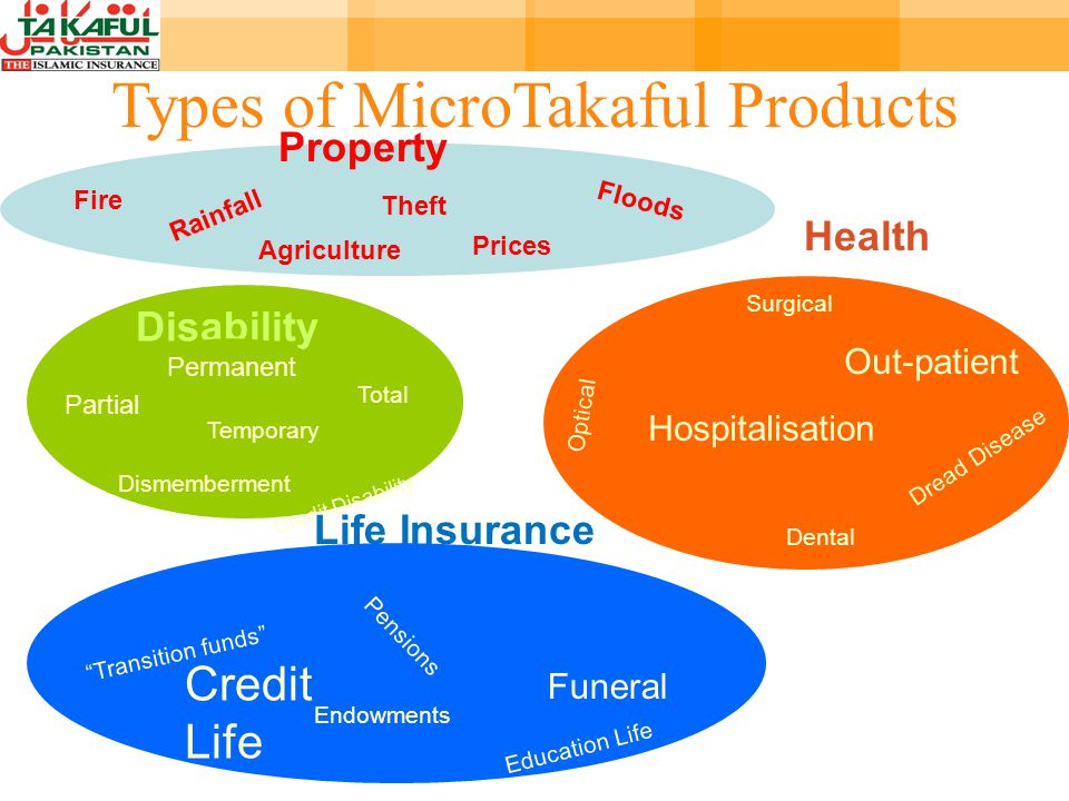 Fire Theft Rainfall Floods Agriculture Property Prices Hospitalisation Dental Optical Dread Disease Out-patient Health Surgical Disability Dismemberment Partial Permanent Temporary Total Credit Disability Life Insurance Credit Life Funeral Endowments Transition funds Pensions Education Life Types of MicroTakaful Products