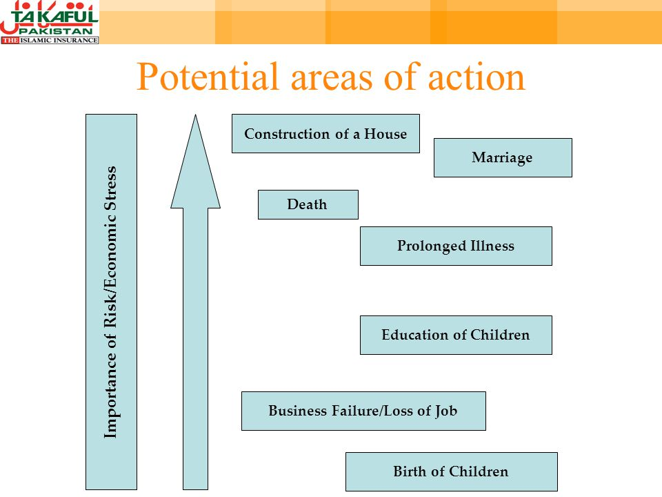 Construction of a House Marriage Death Prolonged Illness Education of Children Business Failure/Loss of Job Birth of Children Importance of Risk/Economic Stress Potential areas of action