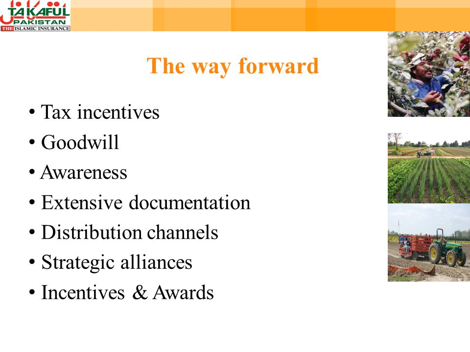 The way forward Tax incentives Goodwill Awareness Extensive documentation Distribution channels Strategic alliances Incentives & Awards