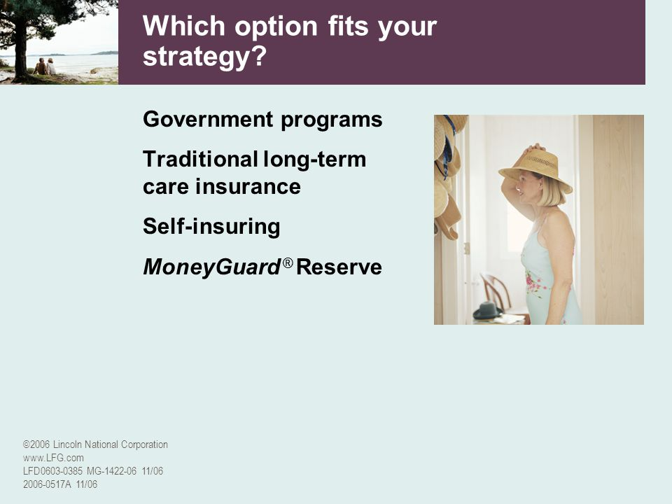 ©2006 Lincoln National Corporation www.LFG.com LFD0603-0385 MG-1422-06 11/06 2006-0517A 11/06 Which option fits your strategy? Government programs Tra