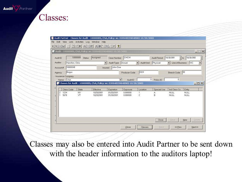 Classes: Classes may also be entered into Audit Partner to be sent down with the header information to the auditors laptop!
