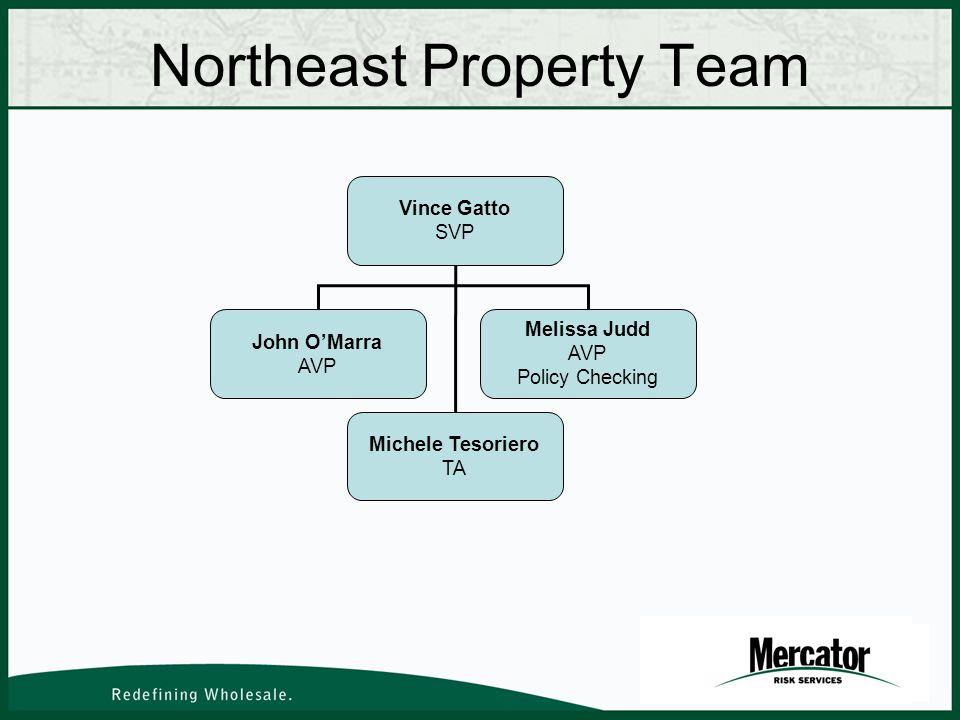 Northeast Property Team Vince Gatto SVP John OMarra AVP Melissa Judd AVP Policy Checking Michele Tesoriero TA