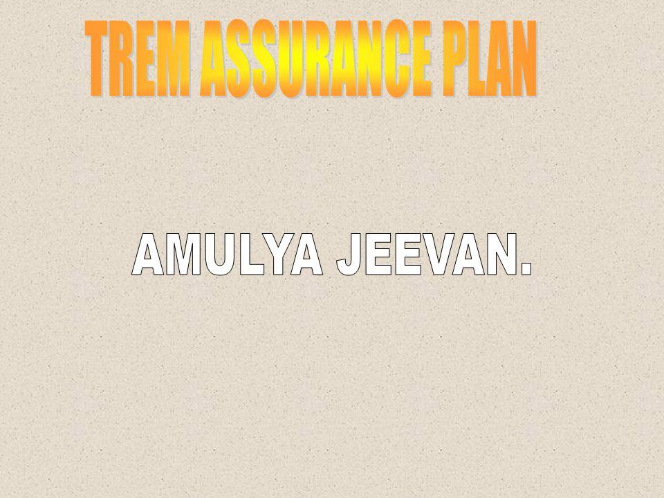 PLAN FOR HIGH – WORTH INDIVIDUALS JEEVAN PRAMUKH