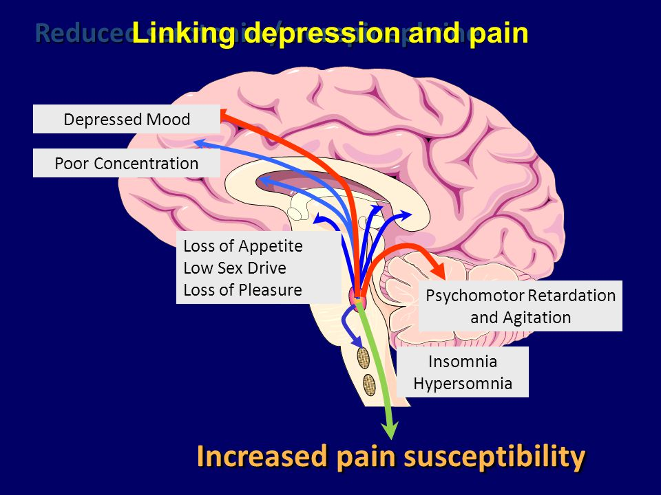 Increased pain susceptibility Depressed Mood Poor Concentration Psychomotor Retardation and Agitation Loss of Appetite Low Sex Drive Loss of Pleasure