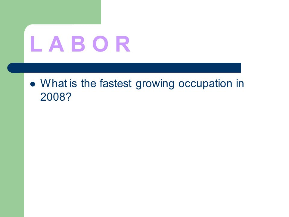 L A B O R What is the fastest growing occupation in 2008?