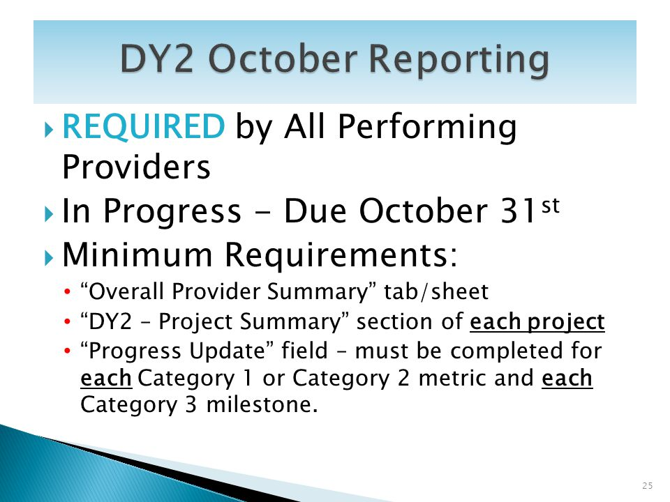 REQUIRED by All Performing Providers In Progress - Due October 31 st Minimum Requirements: Overall Provider Summary tab/sheet DY2 – Project Summary se