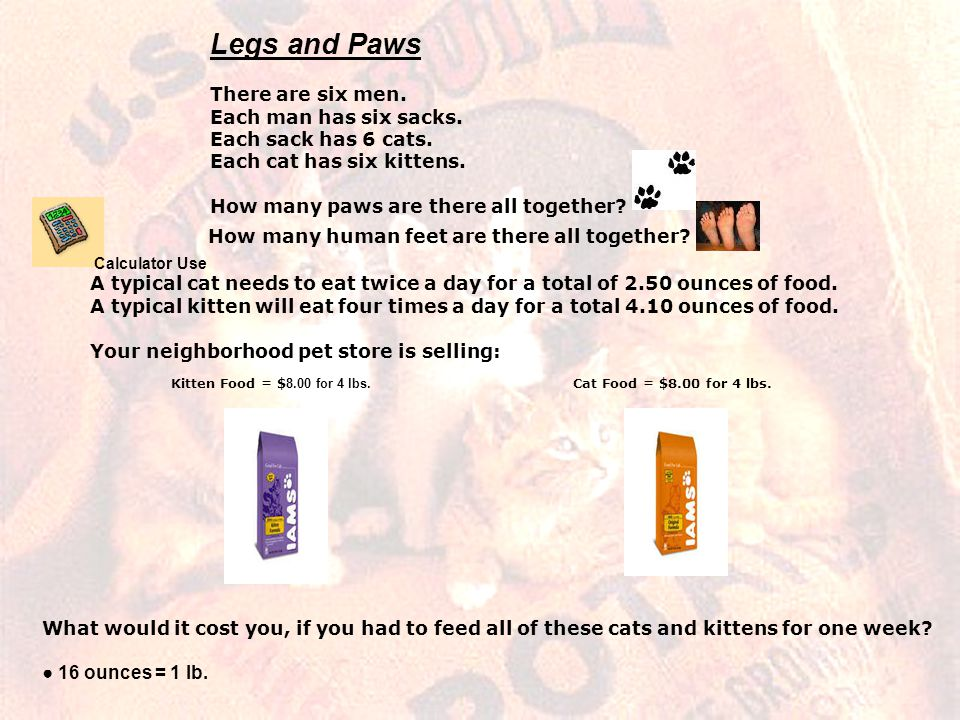 Legs and Paws There are six men. Each man has six sacks. Each sack has 6 cats. Each cat has six kittens. How many paws are there all together? How man