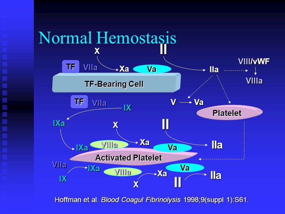 Normal Hemostasis Hoffman et al. Blood Coagul Fibrinolysis 1998;9(suppl 1):S61. TF-Bearing Cell Activated Platelet Platelet TF VIIIa Va VIIIa Va Va VI
