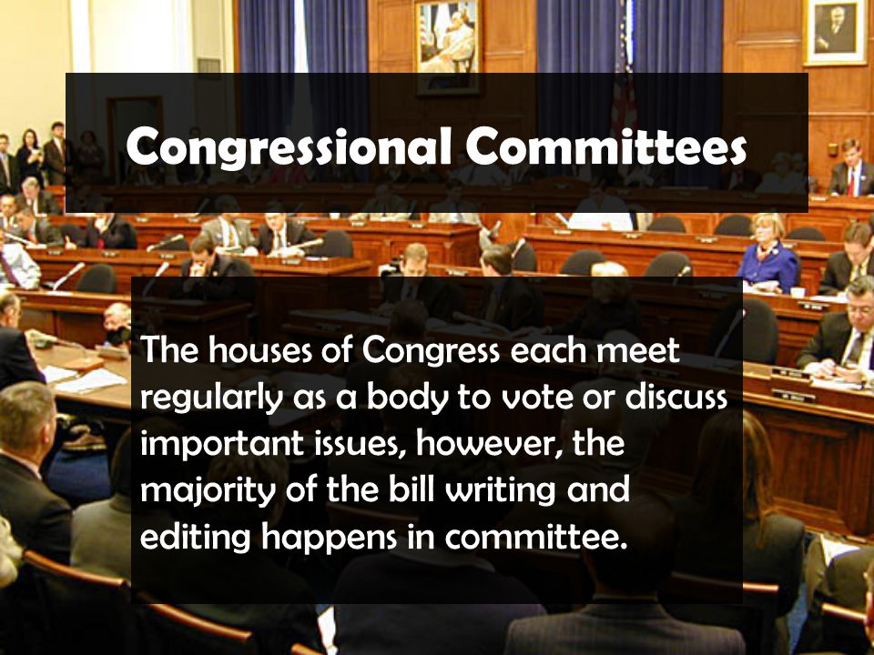 Congressional Committees The houses of Congress each meet regularly as a body to vote or discuss important issues, however, the majority of the bill writing and editing happens in committee.