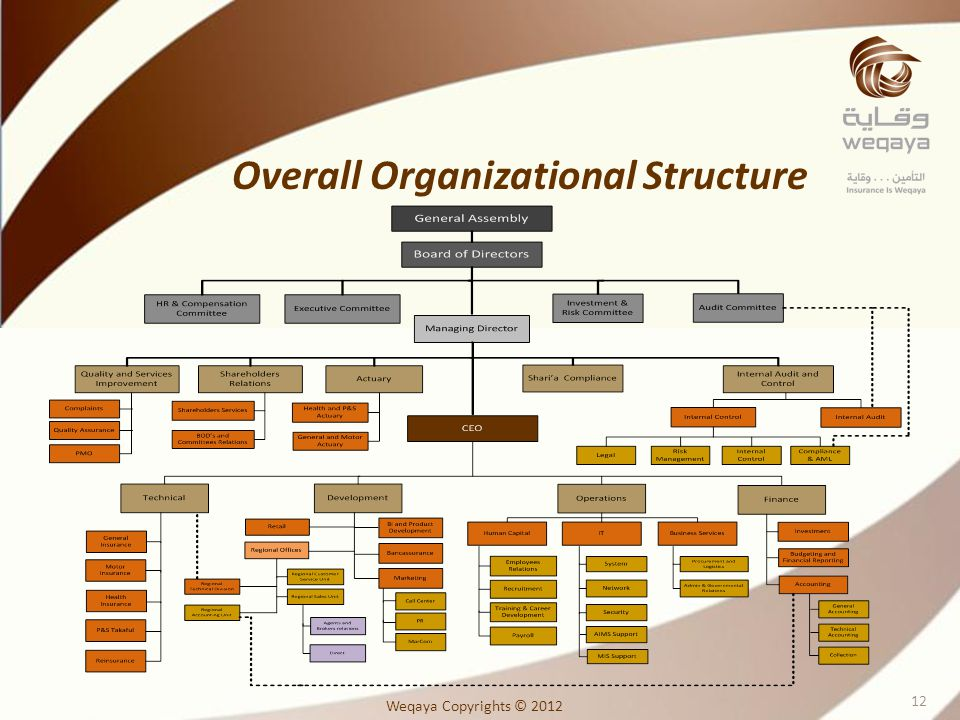 Overall Organizational Structure Weqaya Copyrights © 2012 12