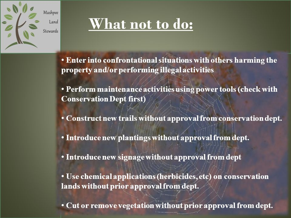 What not to do: Enter into confrontational situations with others harming the property and/or performing illegal activities Perform maintenance activi