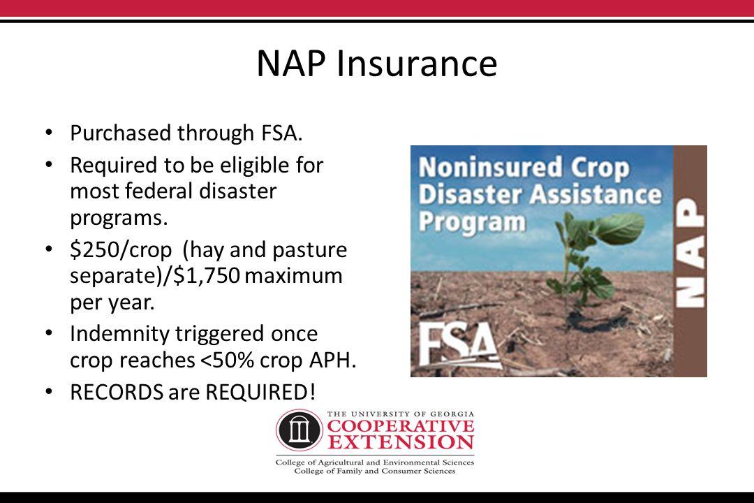 NAP Production/Financial Risk Management