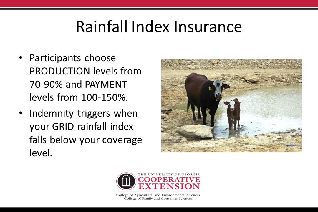 Rainfall Index Insurance New for 2012 in select states and counties. Based on a rainfall index as calculated by NOAA. Producers insure a grid-area =.2