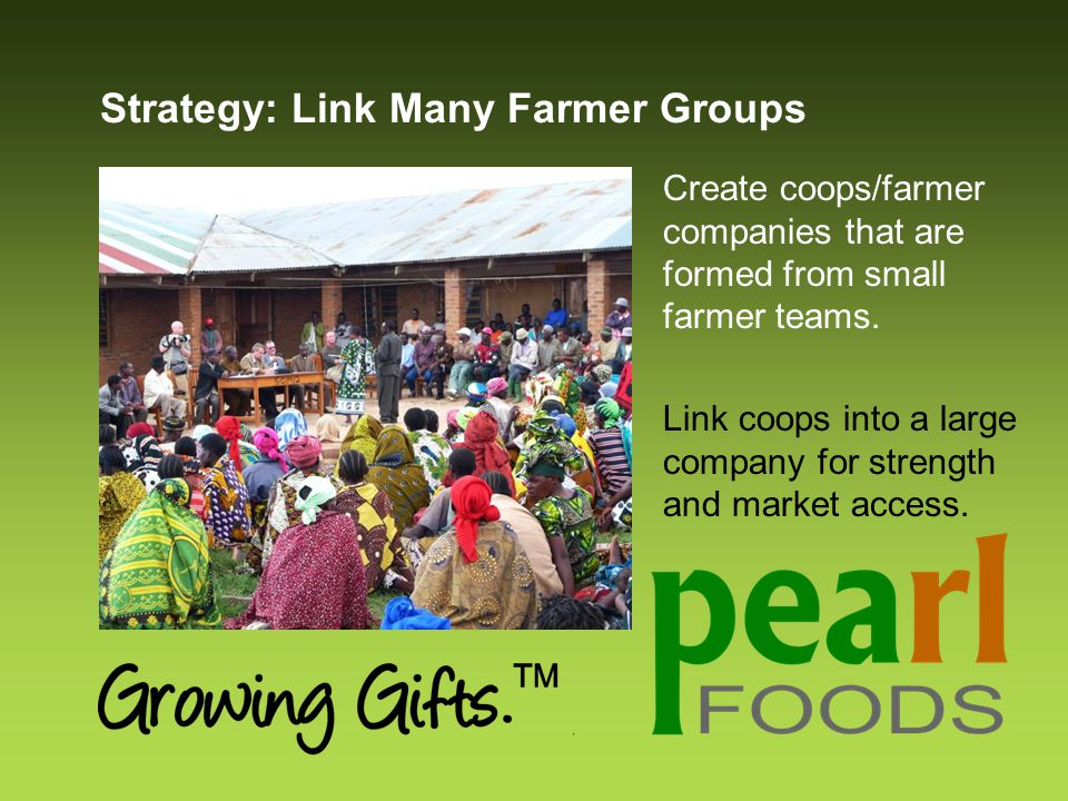 Strategy: Link Many Farmer Groups Create coops/farmer companies that are formed from small farmer teams.