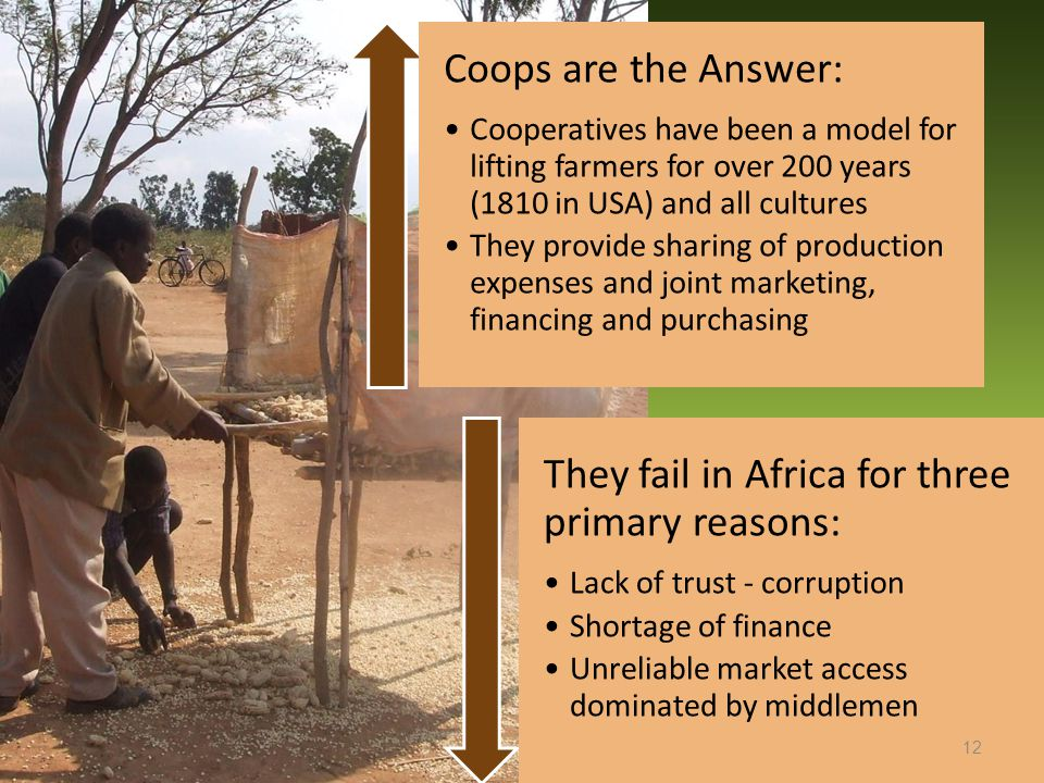 Coops are the Answer: Cooperatives have been a model for lifting farmers for over 200 years (1810 in USA) and all cultures They provide sharing of production expenses and joint marketing, financing and purchasing They fail in Africa for three primary reasons: Lack of trust - corruption Shortage of finance Unreliable market access dominated by middlemen 12