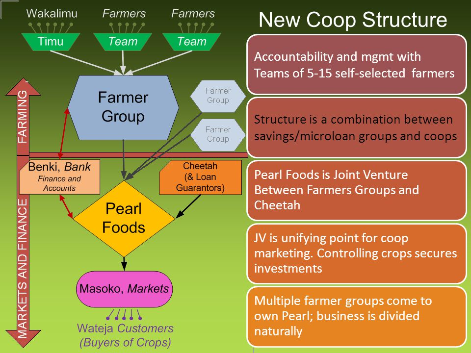 New Coop Structure Accountability and mgmt with Teams of 5-15 self-selected farmers Structure is a combination between savings/microloan groups and coops Pearl Foods is Joint Venture Between Farmers Groups and Cheetah JV is unifying point for coop marketing.