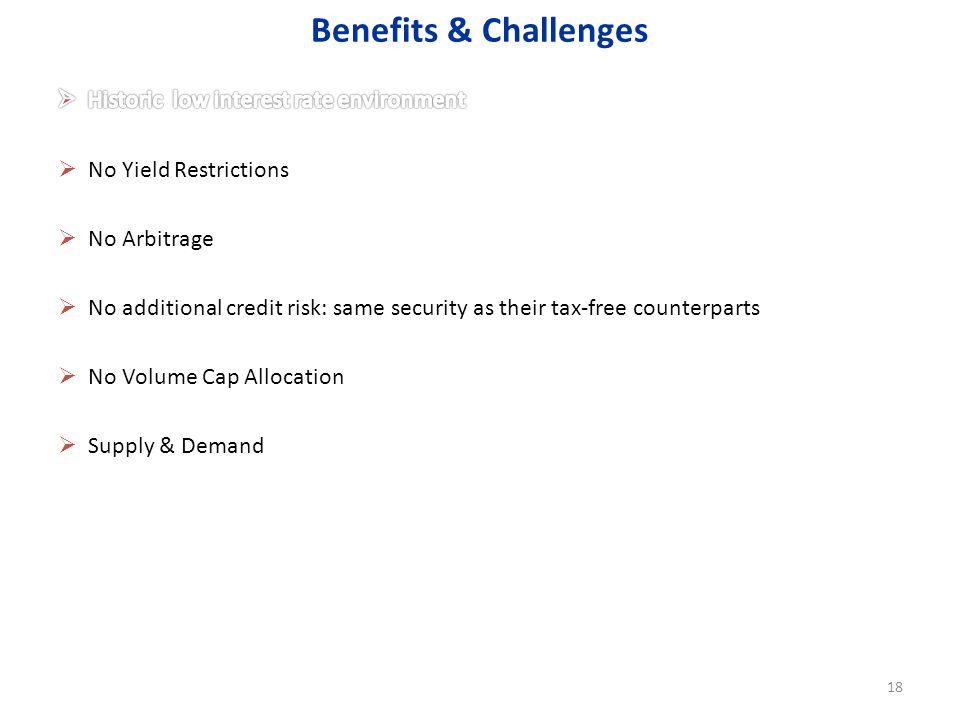 Benefits & Challenges 18