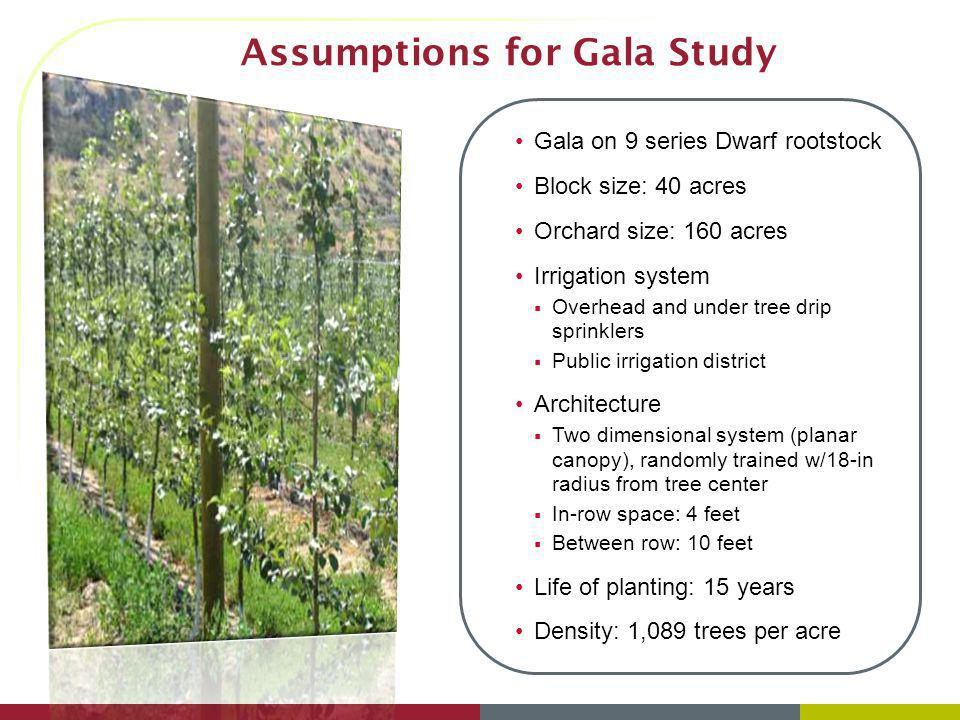 Assumptions for Gala Study Gala on 9 series Dwarf rootstock Block size: 40 acres Orchard size: 160 acres Irrigation system Overhead and under tree dri