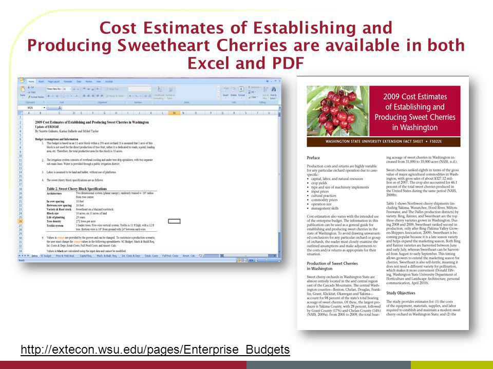 Cost Estimates of Establishing and Producing Sweetheart Cherries are available in both Excel and PDF http://extecon.wsu.edu/pages/Enterprise_Budgets