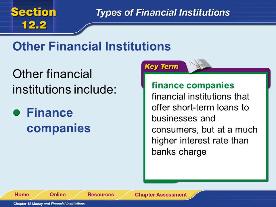 Other Financial Institutions Other financial institutions include: finance companies financial institutions that offer short-term loans to businesses