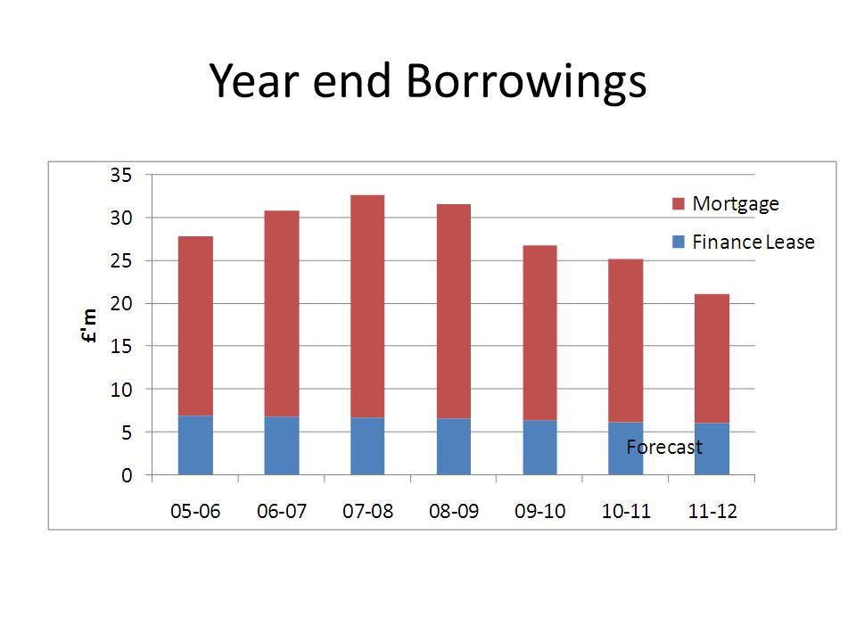 Year end Borrowings