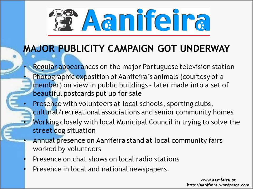 MAJOR PUBLICITY CAMPAIGN GOT UNDERWAY Regular appearances on the major Portuguese television station Photographic exposition of Aanifeiras animals (courtesy of a member) on view in public buildings – later made into a set of beautiful postcards put up for sale Presence with volunteers at local schools, sporting clubs, cultural/recreational associations and senior community homes Working closely with local Municipal Council in trying to solve the street dog situation Annual presence on Aanifeira stand at local community fairs worked by volunteers Presence on chat shows on local radio stations Presence in local and national newspapers.