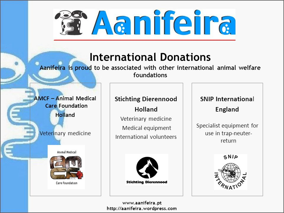 International Donations Aanifeira is proud to be associated with other international animal welfare foundations AMCF – Animal Medical Care Foundation Holland Veterinary medicine Stichting Dierennood Holland Veterinary medicine Medical equipment International volunteers SNIP International England Specialist equipment for use in trap-neuter- return www.aanifeira.pt http://aanifeira.wordpress.com