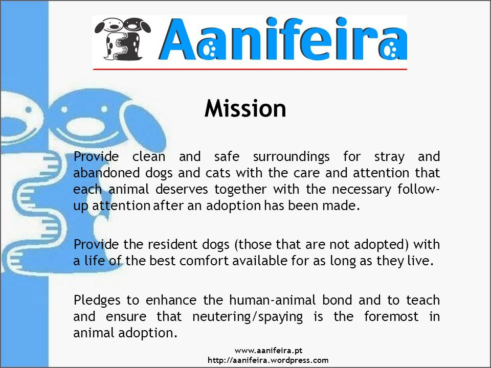 Mission Provide clean and safe surroundings for stray and abandoned dogs and cats with the care and attention that each animal deserves together with the necessary follow- up attention after an adoption has been made.