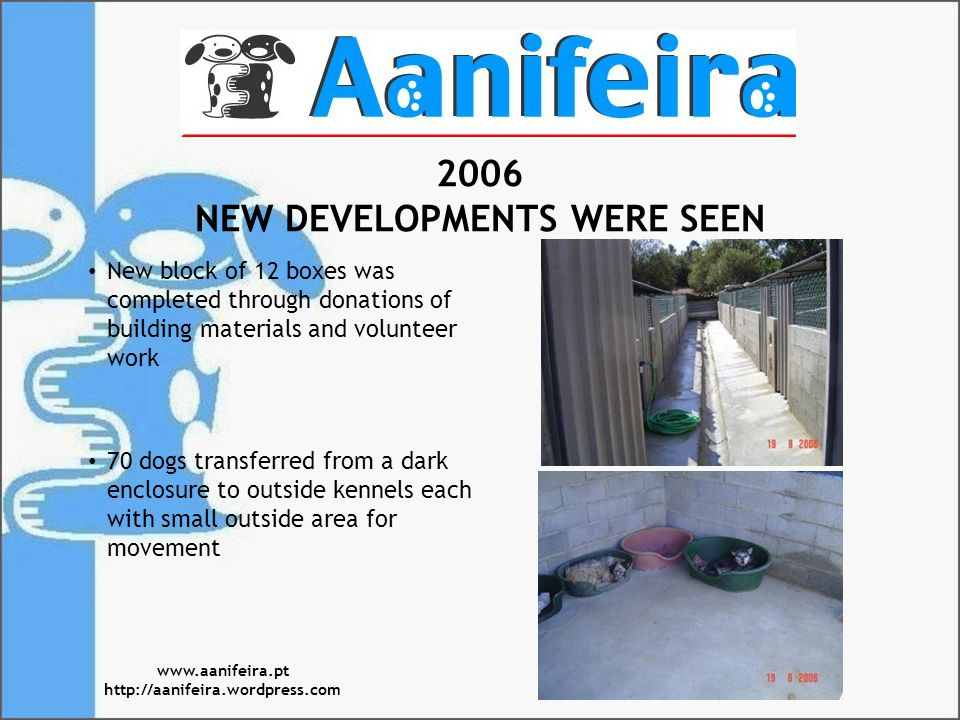 2006 NEW DEVELOPMENTS WERE SEEN New block of 12 boxes was completed through donations of building materials and volunteer work 70 dogs transferred from a dark enclosure to outside kennels each with small outside area for movement www.aanifeira.pt http://aanifeira.wordpress.com