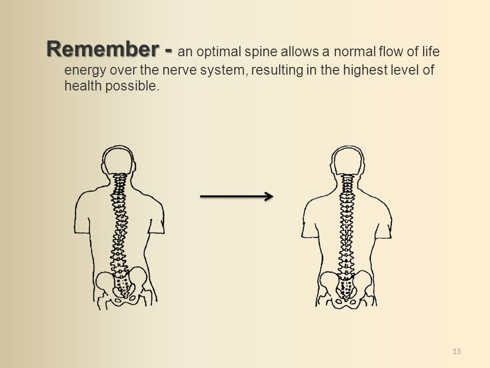 13 Remember - Remember - an optimal spine allows a normal flow of life energy over the nerve system, resulting in the highest level of health possible.