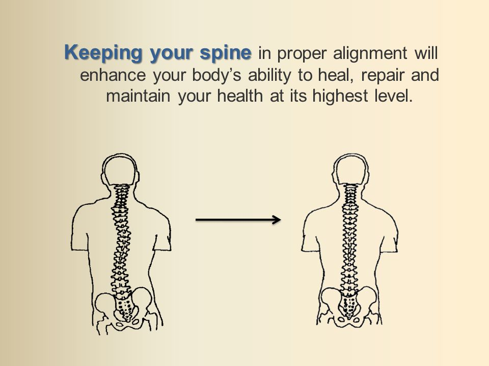 Keeping your spine Keeping your spine in proper alignment will enhance your bodys ability to heal, repair and maintain your health at its highest level.