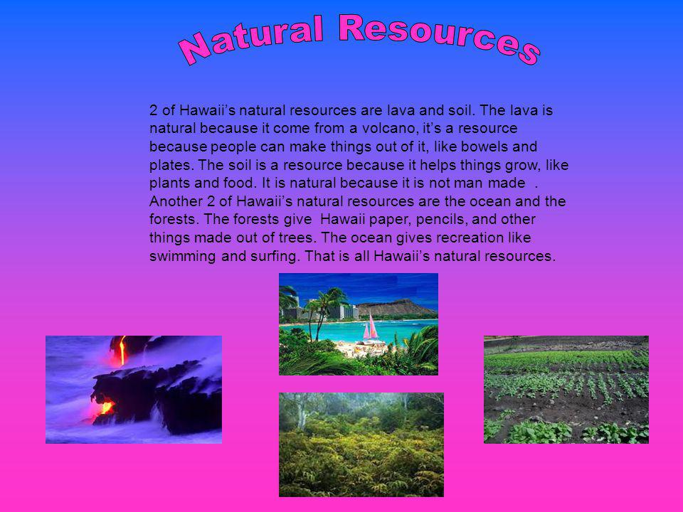 Hawaii has tons and tons of recreation, for example surfing, site seeing, hiking, canoeing, luaus, and going to the beach.