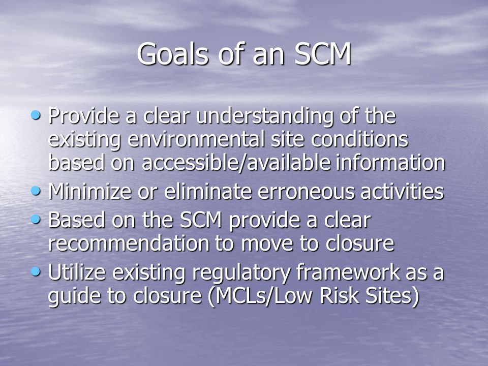 Goals of an SCM Provide a clear understanding of the existing environmental site conditions based on accessible/available information Provide a clear