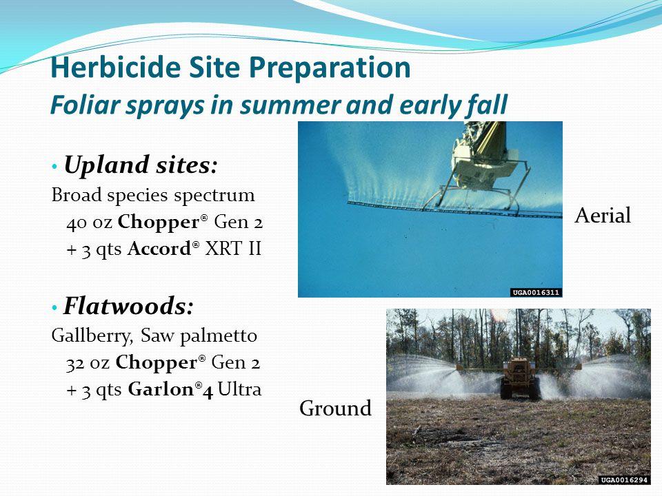 Herbicide Site Preparation Foliar sprays in summer and early fall Upland sites: Broad species spectrum 40 oz Chopper® Gen 2 + 3 qts Accord® XRT II Fla
