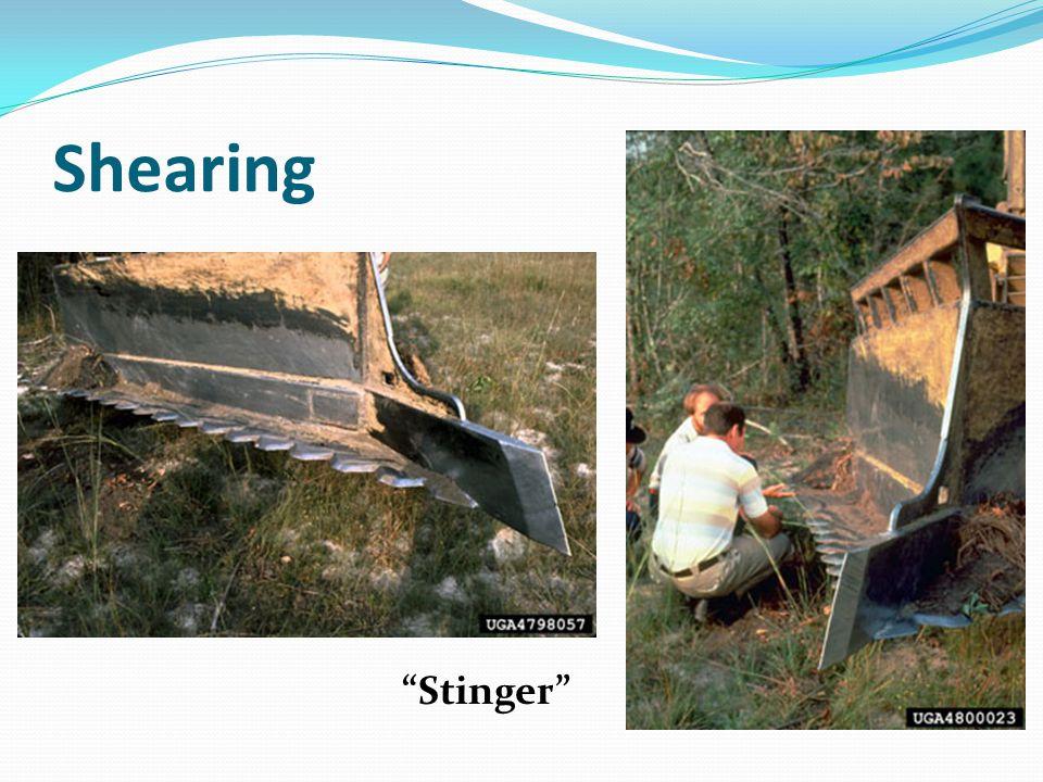 Shearing Stinger