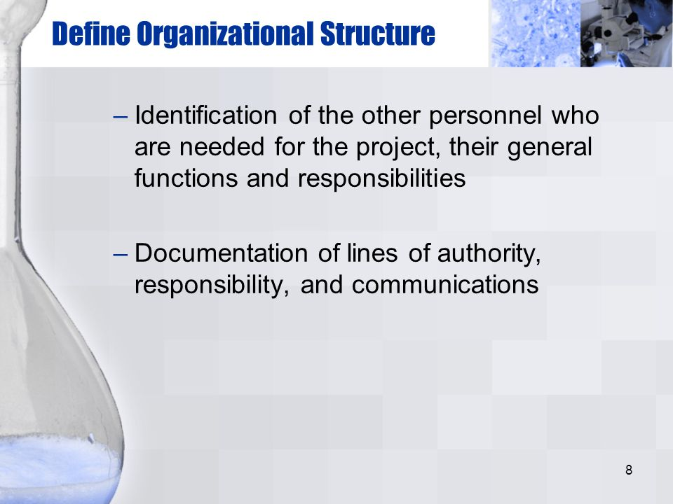 8 Define Organizational Structure –Identification of the other personnel who are needed for the project, their general functions and responsibilities