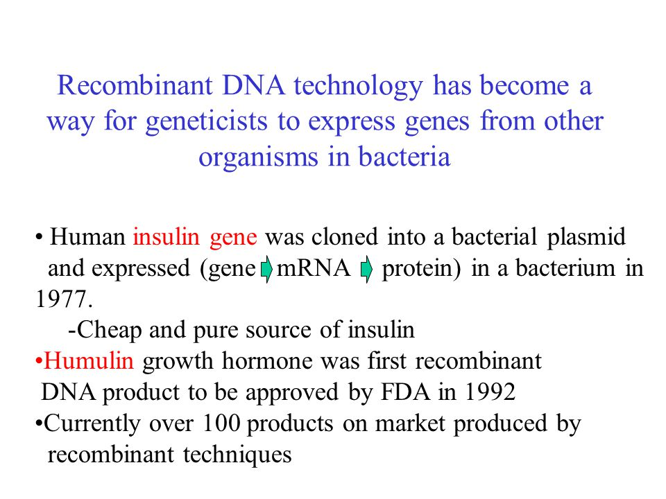 Recombinant DNA technology has become a way for geneticists to express genes from other organisms in bacteria Human insulin gene was cloned into a bacterial plasmid and expressed (gene mRNA protein) in a bacterium in 1977.
