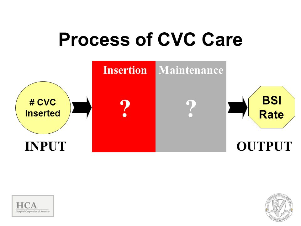 Insertion ? Maintenance ? BSI Rate OUTPUT # CVC Inserted INPUT Process of CVC Care