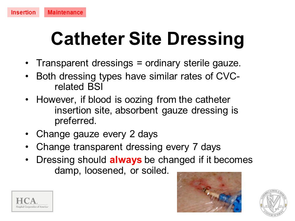 Catheter Site Dressing Transparent dressings = ordinary sterile gauze. Both dressing types have similar rates of CVC- related BSI However, if blood is