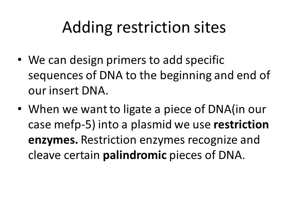 Adding restriction sites We can design primers to add specific sequences of DNA to the beginning and end of our insert DNA.