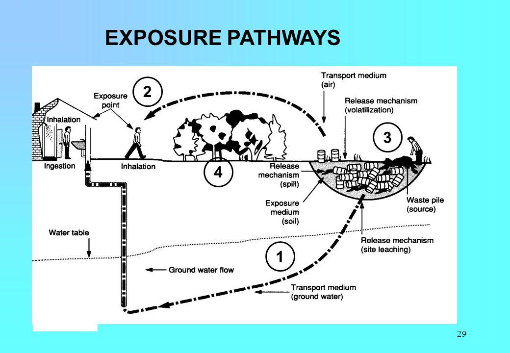 29 EXPOSURE PATHWAYS 1 2 3 4