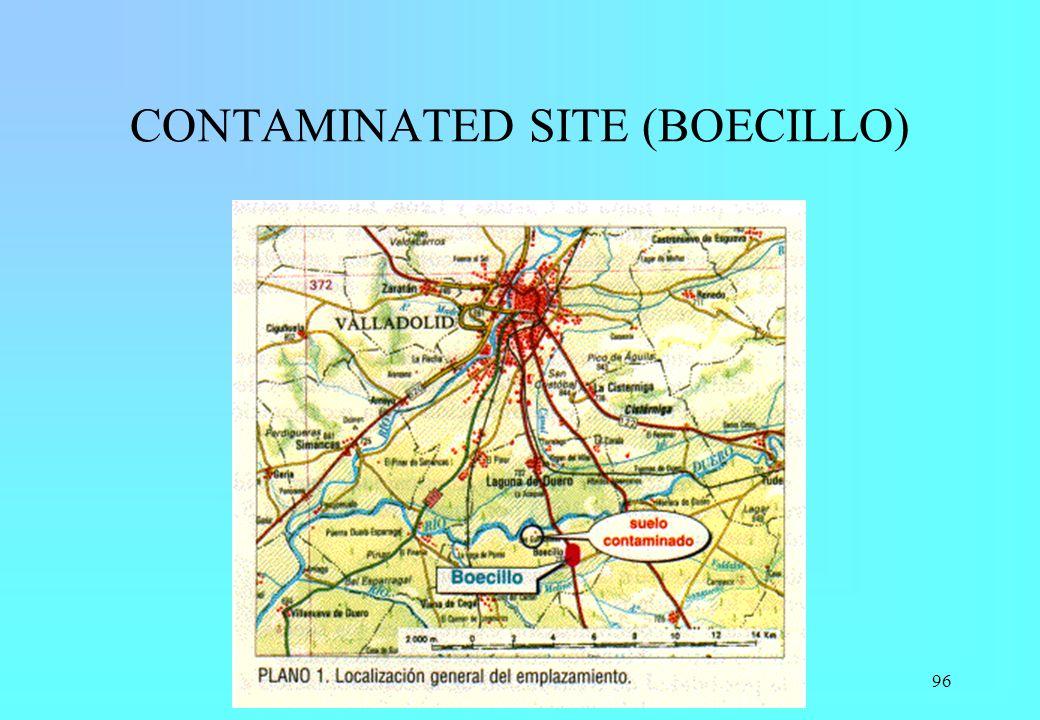 96 CONTAMINATED SITE (BOECILLO)