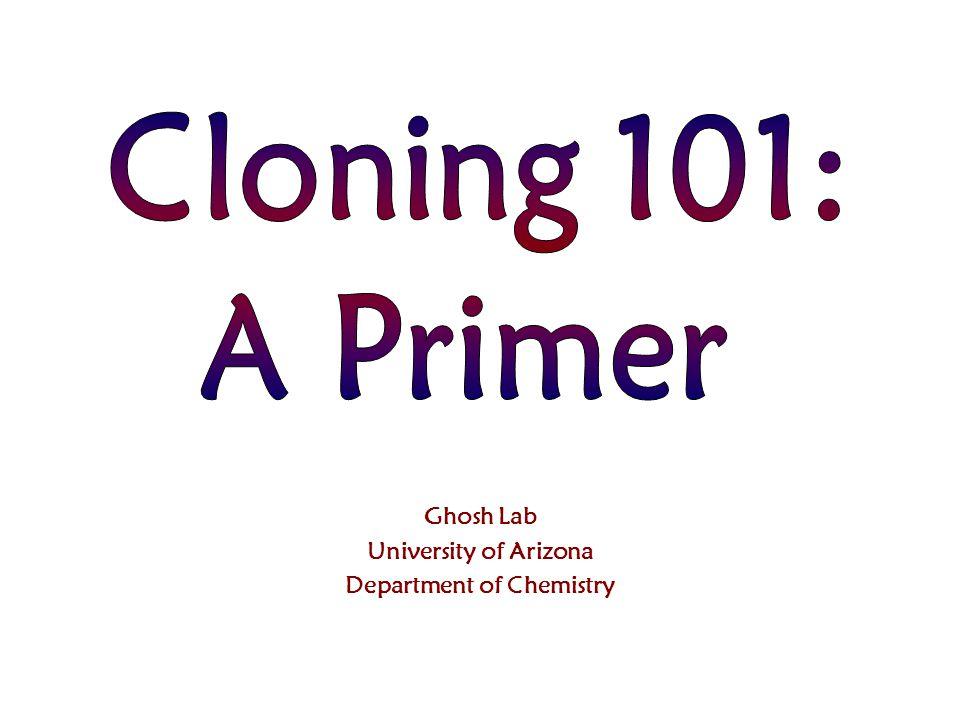 Ghosh Lab University of Arizona Department of Chemistry