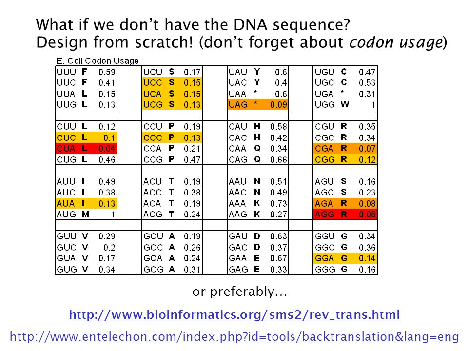 http://www.bioinformatics.org/sms2/rev_trans.html http://www.entelechon.com/index.php?id=tools/backtranslation&lang=eng or preferably… What if we dont