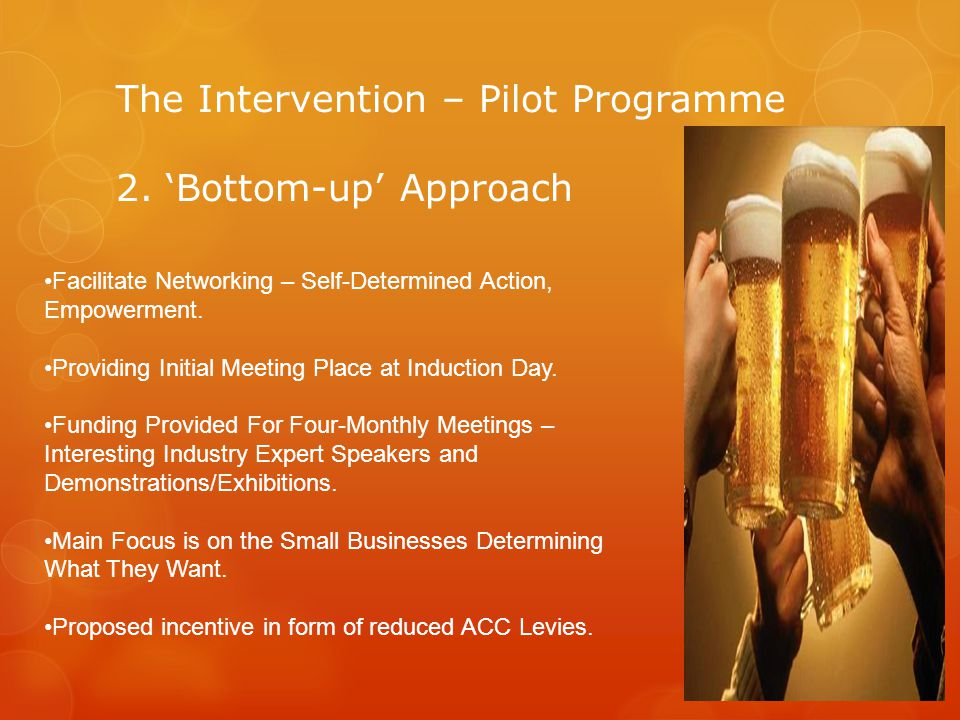 The Intervention – Pilot Programme 2.