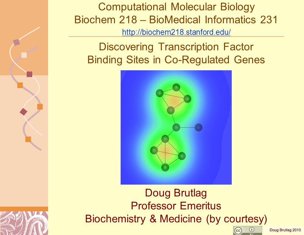 Computational Molecular Biology Biochem 218 – BioMedical Informatics 231 http://biochem218.stanford.edu/ http://biochem218.stanford.edu/ Discovering Transcription Factor Binding Sites in Co-Regulated Genes Doug Brutlag Professor Emeritus Biochemistry & Medicine (by courtesy)