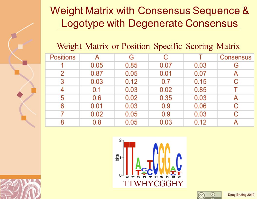 Weight Matrix with Consensus Sequence & Logotype with Degenerate Consensus TTWHYCGGHY Weight Matrix or Position Specific Scoring Matrix