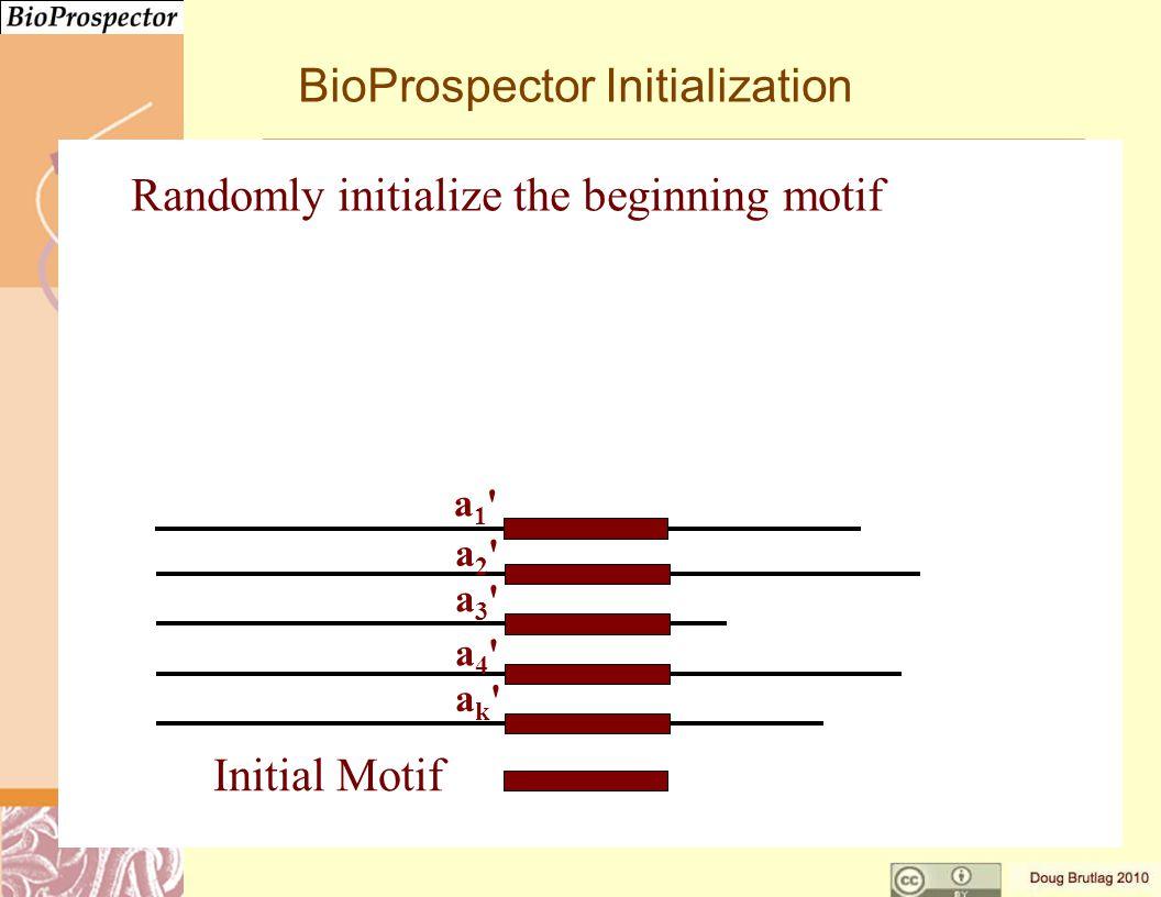 BioProspector Initialization Initial Motif Randomly initialize the beginning motif a3 a3 a4 a4 ak ak a2 a2 a1 a1
