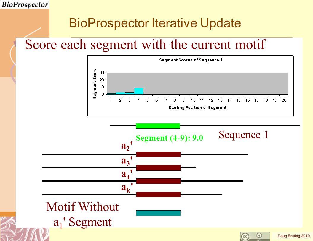 a3 a3 a4 a4 ak ak a2 a2 Motif Without a 1 Segment Segment (4-9): 9.0 Sequence 1 BioProspector Iterative Update Score each segment with the current motif